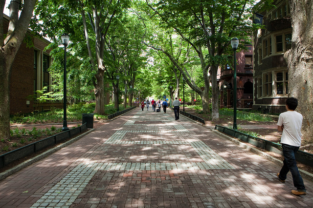 University of Pennsylvania's Locust Walk. Source: Alan Turkus.