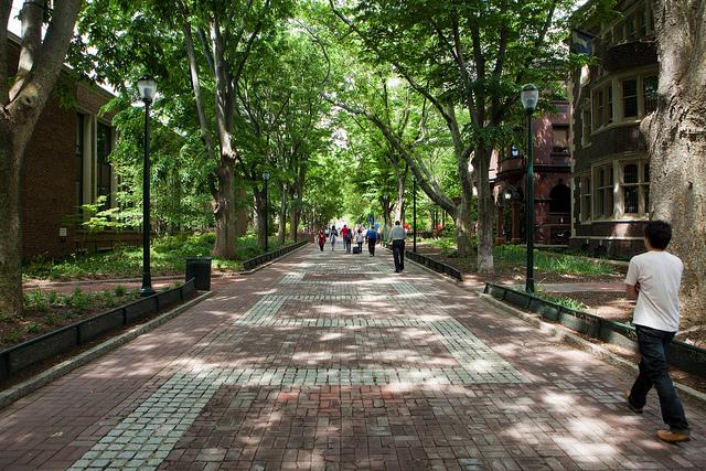 University of Pennsylvania's Locust Walk. Source: Alan Turkus.